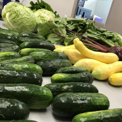 Organic local farm fresh veggies on Fridays!