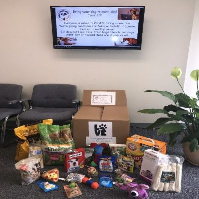 Take your dog to work day with donations for Dakin Humane Society